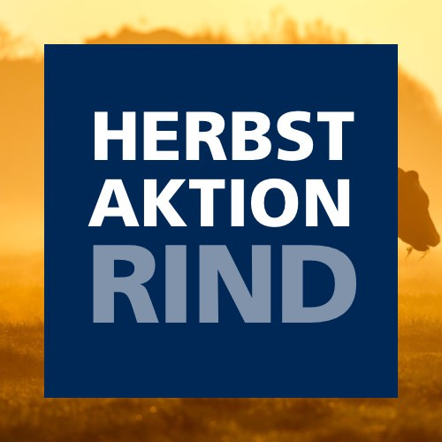Herbstaktion Rind 2019