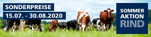 Sommeraktion Rind 2020