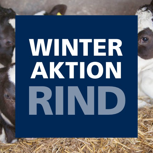 Winteraktion Rind 2019
