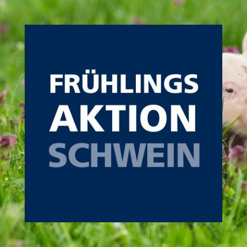 Frühlingsaktion Schwein 2021