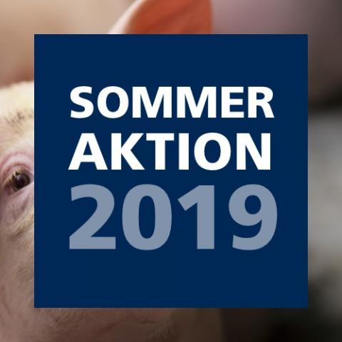 Sommeraktion 2019
