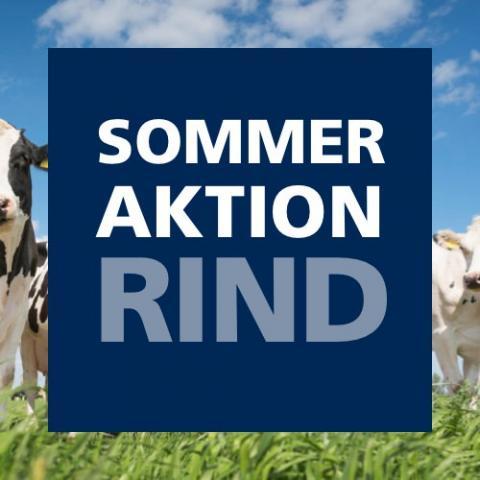 Sommeraktion Rind 2021
