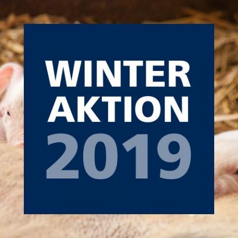Winteraktion 2019
