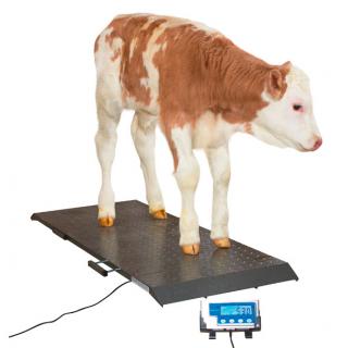 Plattformwaage PS 1000 bis 500 kg #1