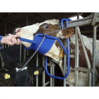 Kopfstütze für Rinder #1