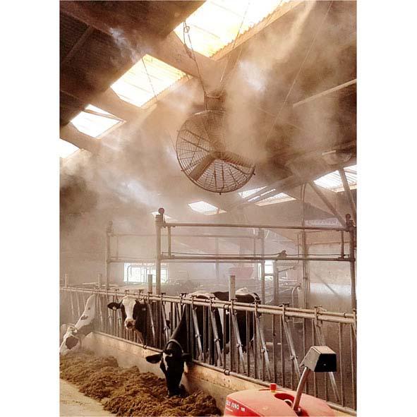 Hochdruckkühlung Easy-Line 25