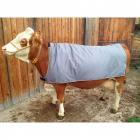 Thermodecke für Kühe, 155 cm